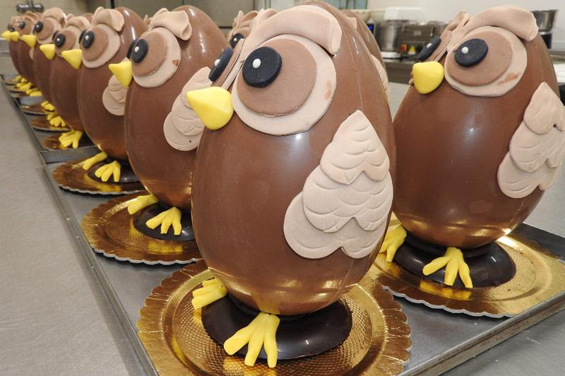 cioccolato-uova-gufo_pasqua-perugia
